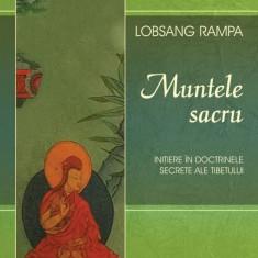 Muntele Sacru (eBook)