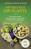 Antibiotice din plante. Alternative naturale pentru combaterea bacteriilor rezistente la medicamente (eBook), litera
