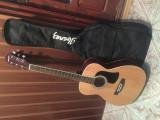 Vând chitară acustică, Aria