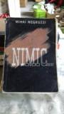 NIMIC - MIHAI NEGRUZZI
