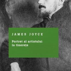 Portret al artistului la tinerete (eBook)