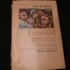 FRUMOSUL PRINCIPE CERCEL-RADU BOUREANU-454 PG=, Alta editura