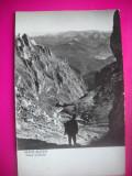 HOPCT 40235  VALEA CERBULUI IN 1963  MUNTII BUCEGI-JUD PRAHOVA-RPR-CIRCULATA