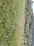 Vand teren, Teren extravilan