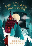 The Evil Wizard Smallbone, Hardcover