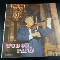 VINIL  TUDOR PANA