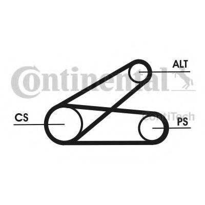 Set curea transmisie cu caneluri FORD TRANSIT platou / sasiu (2006 - 2014) CONTITECH 6PK873 ELAST T1