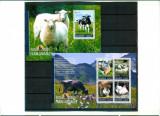 Uganda 2014 - Animale domestice  - BL + serie (KB) - nestampilate, Nestampilat