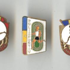 POLISPORTIV  Romania - Lot 3 Insigne anii 1970 - Insigna EMAIL LA CALD - OFERTA
