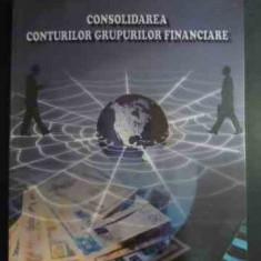 Consolidarea Conturilor Grupurilor Financiare - Florin Ioan Scortescu ,543601