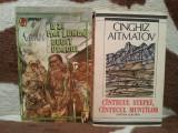 O ZI MAI LUNGA DECAT VEACUL/CANTECUL STEPEI CANTECUL MUNTILOR-CINGHIZ AITMATOV