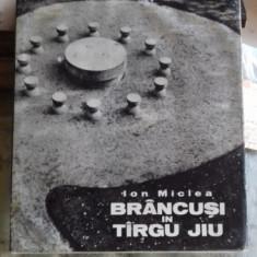 BRANCUSI IN TIRGU JIU - ION MICLEA