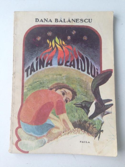 Taina dealului/carte povesti copii/Dana Balanescu/1990