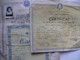 Lot 3 diplome pe acelasi nume