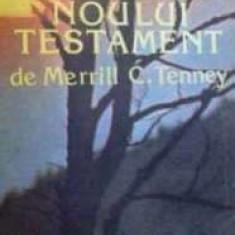Studiul Noului Testament  -  Merrill C. Tenney