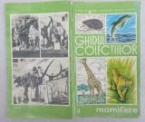 Gid vechi de colectie muzeul Grigore Antipa mamifere zoologie