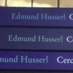 Cercetari logice vol. II 1-3  / Edmund Husserl