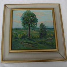 Impresionanta pictura ulei pe placaj semnat Lilja, stil impresionism, Peisaje