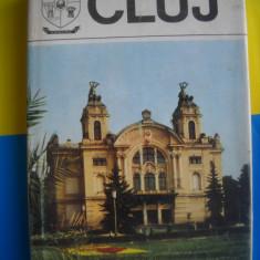 HOPCT JUDETELE PATRIEI CLUJ -1980 -302   PAGINI