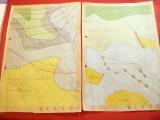 2 Harti cu Precipitatiile si Padurile din Judet VLASCA , color ,dim. A4