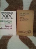 HERMANN HESSE CARTI (2 VOL)