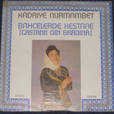 Vinyl/vinil Kadriye Nurmambet – Bahcelerde Kestane (,muzica tatara),VG+