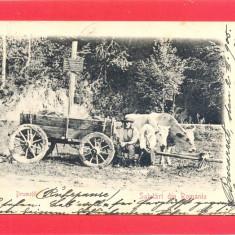 DRUMETII-carte postala ilustrata alb negru  circulata 1905, Fotografie