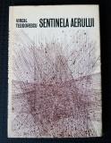 Virgil Teodorescu - Sentinela aerului