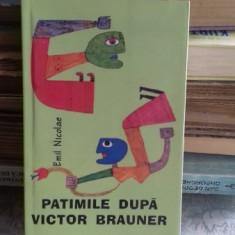 PATIMILE DUPA VICTOR BRAUNER - EMIL NICOLAE