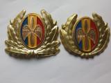 Cuc cascheta-Aviatie-oficer  si subofiter