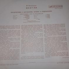 Disc vinil vechi URSS,Cartea junglei-MOWGLI,disc vinil povesti,Transp.GRATUIT