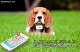 Zgarda TKSTAR GPS cu localizare pentru animale