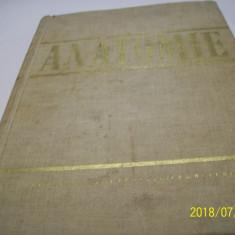 anatomie-an1966