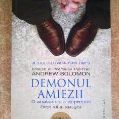 Andrew Solomon – Demonul amiezii