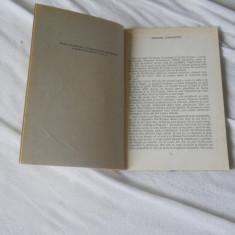 ANGELA DUMITRESCU-BEGU - MARAMA COSANZENEI, 1985