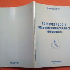 Psihopedagogia Recuperarii Handicapurilor Neuromotorii - Dumitru Motet, Humanitas