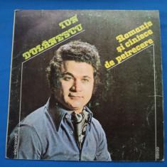 ION DOLANESCU / ROMANTE SI CANTECE DE PETRECERE, VINIL, electrecord