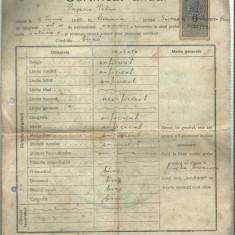 "AMS - CERTIFICAL ANUAL LICEUL ""STEFAN CEL MARE"" SUCEAVA 1922 SEMNAT V. BURDUHOS"