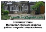 Multiproprietate:sediu afaceri vinicole,podgorie vie,padure,terenuri constr+agri