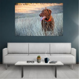 Tablou Canvas Dog, Dimensiunea 80 x 50 cm