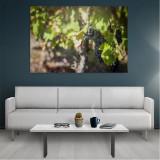 Tablou Canvas Grapes, Dimensiunea 80 x 50 cm