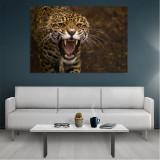 Tablou Canvas Jaguar, Dimensiunea 80 x 50 cm