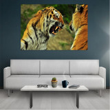 Tablou Canvas Tigers, Dimensiunea 80 x 50 cm