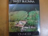 Dulce Bucovina Ion Miclea 520 ilustratii Sweet Bucovina