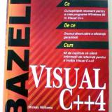 Bazele Visual C++4 Mickey Williams, Teora