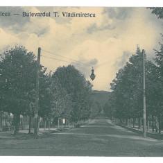 1664 - Rm. VALCEA, Romania, T. Vladimirescu Ave. - old postcard - unused