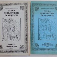 CALEA SUFLETELOR IN VESNICIE SAU CELE 24 VAMI ALTE VAZDUHULUI , DOUA VOLUME