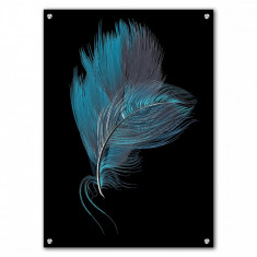 Tablou Acrilic Black Blue Feathers
