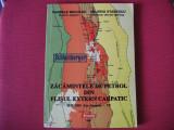 Zacamintele de petrol din flisul extern carpatic - Pandele Neculae,V.Stanescu