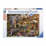 Puzzle animale din africa 3000 piese, Ravensburger